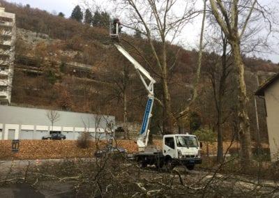 Hebebühneeinsatz Maibach Gartenbau GmbH Safner Biel Seeland