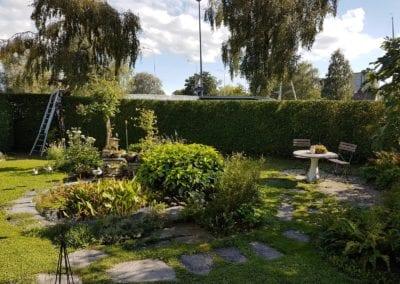Hecke schneiden Maibach Gartenbau GmbH Safnern Nidau Seeland