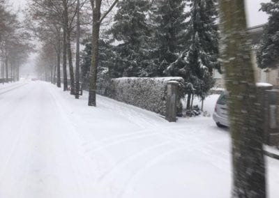 Schneeräumung Maibach Gartenbau GmbH Safnern Nidau Biel Seeland 8